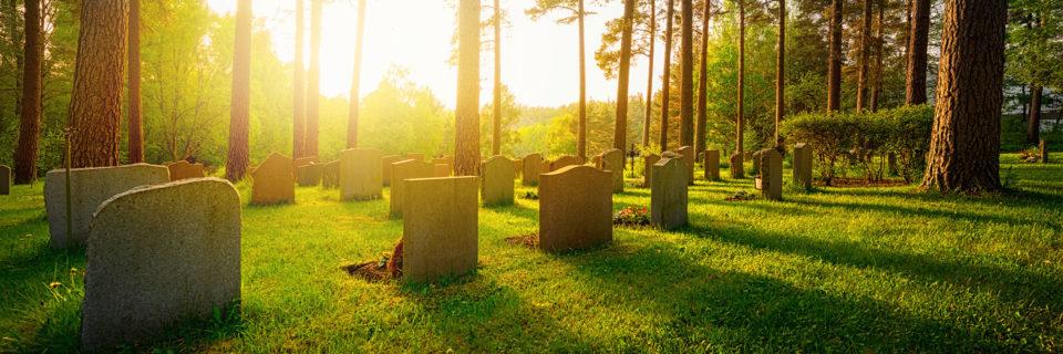 Grabpflege und Gartenpflege
